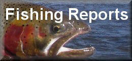 Wyoming fishing reports